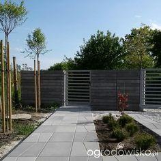 W moim ogrodzie, gdzie czas leniwy... - strona 413 - Forum ogrodnicze - Ogrodowisko