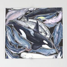 Dolphin, orca, belug