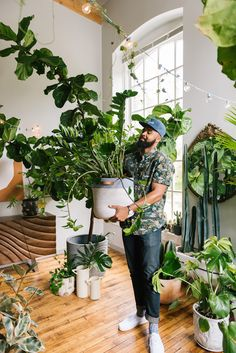 Hilton Carters Best Plant Care Tips How To Use A Planter Without A Drainage Hole - Front Main Room With Plants, House Plants Decor, Types Of Plants, Plant Decor, Inside Plants, Indoor Garden, Garden Plants, Indoor Plants, Cool Plants