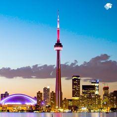 A partir del 4 de mayo disfruta de un viaje fantástico en Toronto, la capital financiera de Canadá. http://vuela.am/1vSecax