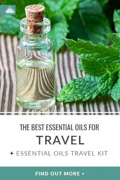 Discover the best essential oils for nausea and travel in this article! Essential oils can also help ease travel digestion, boost immunity & more. Essential Oils For Migraines, Essential Oil Carrier Oils, Ginger Essential Oil, Essential Oils For Headaches, Cedarwood Essential Oil, Essential Oils For Skin, Essential Oil Uses, Oils For Ear Ache, Remedies For Nausea