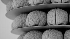#Nuestro cerebro funciona en 11 dimensiones - RPP Noticias: RPP Noticias Nuestro cerebro funciona en 11 dimensiones RPP Noticias En 2015,…