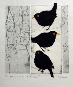 "This is Sooooooo Amazing!!!! Not quite ""Corvid"", but.....they are ""black birds"".  from Swedish Printmakers"