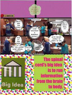 3rd Grade uses Pic Collage, Comic Book, and Fotobabble to share their research on the cerebrum, 4 lobes, cerebellum, brain stem, and spinal cord.  http://blogs.neisd.net/kgerma/2014/11/21/3rd-grade-large-parts-of-the-brain/