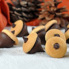 Chocolate Acorns - a super easy treat for Thanksgiving or the Fall season