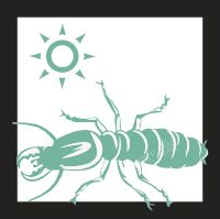 Toda la información sobre termitas. Consejos, insecticidas y métodos caseros para la eliminación y control de las termitas. ¡Tenga el control de esta plaga!