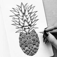 drawing, pineapple, and art image. black and white
