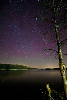 30 second exposure at lakeview lodge in Beaver's Bend state park. Vacation Places, Vacation Destinations, Vacations, Beavers Bend State Park, State Parks, Broken Bow Lake, Beaver Bend, Sky Landscape, Science And Nature