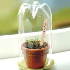 Image result for diy indoor herb garden