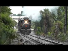 Mount Dora Florida Train Travel, Travel Usa, Mount Dora Florida, Old Florida, Orange Blossom, Best Memories, Travel Pictures, Day Trips, Trains