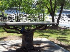 Beautiful park bench on the Greenbelt at the falls in Idaho Falls TrinaBoice.com