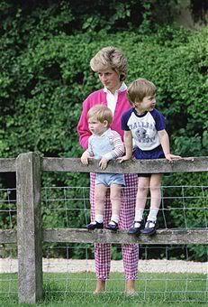 July 18, 1986:  Princess Diana with Prince Harry and Prince William at Highgrove, Gloucestershire.
