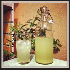 Lemonad med citron och ingefära - Mitt kök