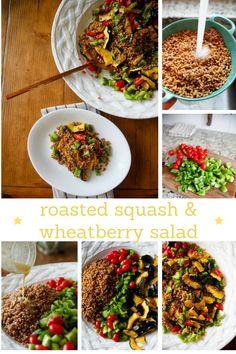 roasted squash + wheatberry salad