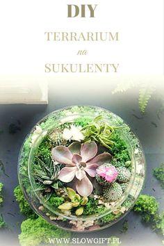 Succulent terrarium garden DIY / Prezent na parapetówkę, czyli terrarium na sukulenty