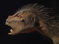 New dinosaur discovery a cross between 'a bird, a vampire and a porcupine'