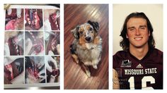 This is a petition to have Breck Ruddick removed from the Missouri State University football team.    Ruddick was someone Katie trusted. He hadwatched her dog before and she had spent a good amount of time with Breck as friends. She never thought leaving her 42 pound Australian Shepherd with Breck,...