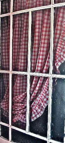red checked curtains ... !  (I love the photo and as soon as I saw it, I thought it would be yours!  So pretty!  Thank you for posting!)