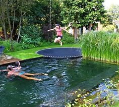 Natural pool, let plants clean your water. No chemicals!