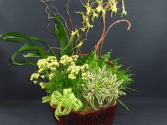 Basket arrangement of greens and twig for a very organic feel