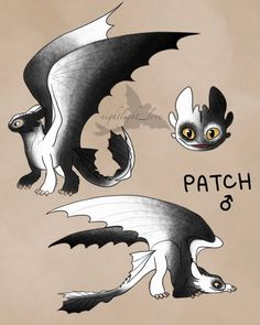 Wings Of Fire Dragons, Cool Dragons, Dragon Armor, Clay Dragon, Magical Creatures, Fantasy Creatures, Toothless Drawing, Night Fury Dragon, Httyd Dragons