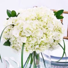 Wedding Table Centerpiece White Hydrangea 3