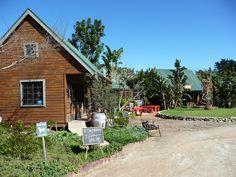 Timberlake Organic Village (Wilderness, South Africa): Top Tips Before You Go - TripAdvisor Wilderness, South Africa, Trip Advisor, Organic, Cabin, House Styles, Outdoor Decor, Tips, Photos