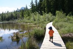 Family Adventures in the Canadian Rockies: Best Toddler/Preschooler Hikes Outdoor Store, Outdoor Camping, Best Campgrounds, Hiking With Kids, Canadian Rockies, Family Adventure, Banff, Dream Vacations, Kayaking
