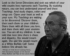 Native Wisdom~