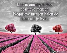 Wijze spreuken Facebook Plaatjes Christmas Wine Bottles, E Words, Dutch Quotes, Let's Have Fun, Reasons To Smile, Good To Know, Qoutes, Sayings, Life