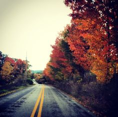 The reason why Oregon is my favorite place in the Fall