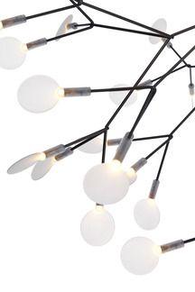 Moooi Heracleum II Suspended Lamp | 2Modern Furniture & Lighting