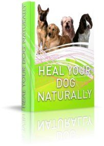 Heal Your Dog Naturally by Sara Rooney