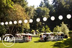 Andrew Weeks Photography, Ceremony Venue, Wine Country