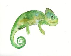 CHAMELEON Original watercolor painting 10x8inch by dimdi on Etsy