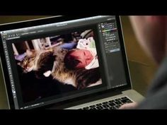 Beautiful tutorial on selecting fine hair in Photoshop. Photoshop Playbook: Making Fine Hair Selections - YouTube