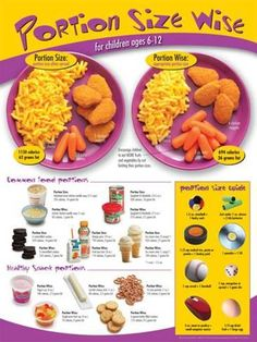 Laminated Poster: Kids Portion Size Poster- ages 6-12 : 24x18in