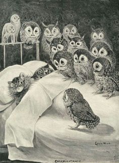 Louis Wain Owl Cat, Owl Bird, Goodnight Post, Bad Dreams, I Love Cats, Cute Cats, Funny Cats, Campsis, Crazy Bird