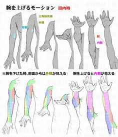 Hand Drawing Reference, Drawing Reference Poses, Anatomy Reference, Drawing Poses, Drawing Tips, Body Drawing Tutorial, Manga Drawing Tutorials, Sketches Tutorial, Body Tutorial