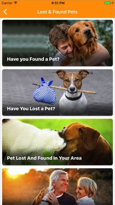 #HarveyFloods Find #lost #pets or post #found animals to reunite with their families of #HurricaneHarvey via @BestFriends  #Dogs #Cats #Horses #Rabbits #Reptiles  #Hurricane #Harvey #Floods