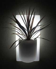 Ballavaz Luxe indoor/outdoor illuminated modular wall planters are made of recycled HDPE plastic. Distinctively-styled, available in 10 unique colors, and two sizes. Perfect for growing small plants, flowers, and herbs. You can create your own custom patterns and shapes