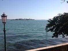 Venice giardini