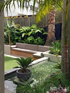 Tropical courtyard garden with a water feature and built-in alfresco sofa