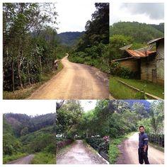 Kemarin aretta dapat cerita soal nilai ekspor biji kopi asal Aceh Tengah dalam bentuk mentah ke berbagai negara, jumlah sekitar 1.300 ton dari sekitar 1.700 petani di satu wilayah, kalau kit... Country Roads