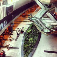 Airport - Recife/ Pernambuco / Brazil