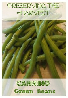 preserving the harvest How To Can Green Beans~The Homesteading Hippy