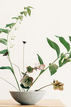 Ikebana - a type of Japanese flower arranging. Ikebana Flower Arrangement, Ikebana Arrangements, Flower Vases, Floral Arrangements, Vase Design, Floral Design, Art Floral Japonais, Arreglos Ikebana, Spring Decoration