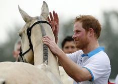 Prince Harry Photos - Britain's Prince Harry puts his hand on a horse following the Sentebale Royal Salute Polo Cup 2016 at the Valiente Polo Farm in Wellington, Florida on May 4, 2016. / AFP / RHONA WISE - Prince Harry Attends the Sentebale Royal Salute Polo Cup
