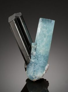 """AQUAMARINE & SCHORL TOURMALINE Dache, Haramosh Mts., Gilgit Dist., Gilgit-Baltistan Div., Pakistan The remote and rugged terrain of the Haramosh Mountains conceals crystal treasures from the eyes of all but the most intrepid of local diggers. A """"pocket"""" in one of the mountain slopes produced this combination specimen formed of an Aquamarine prism united at the base with a Schorl Tourmaline of similar dimensions."""