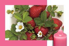 Mansikkaunelma Hedelmiä & sitrusta Tuoksu vie sinut kesän aurinkoisille mansikkavainioille. Mehukasta makeutta.